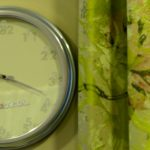 tapisserie landau vespa uhr vorhangstoff
